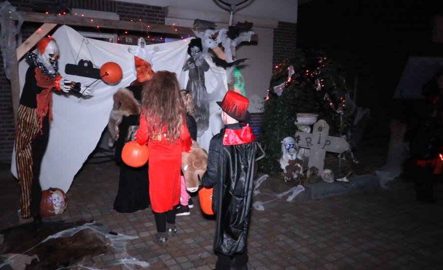 Bruisend Oss - Halloween Krinkelhoek