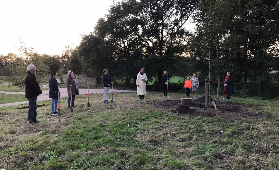 Lindeboom geplant in herinneringsbos Landerij VanTosse